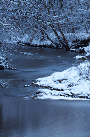 Dalkeith Country Park Snow, Image-100106-0026